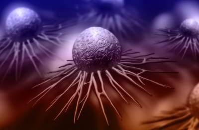 CRISPR, MaxCyte expand partnership into immuno-oncology