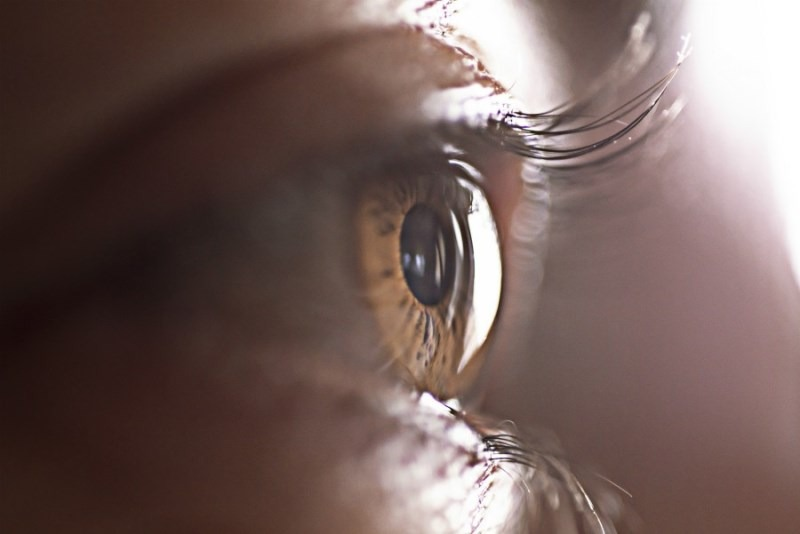 cornea-