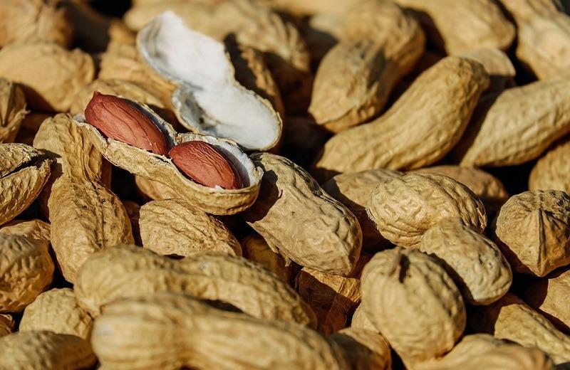 nuts-1736520_960_720