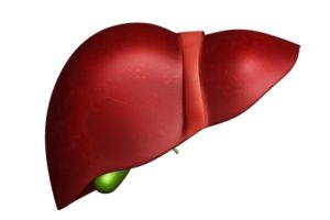 Gilead, insitro collaborate to develop therapies for nonalcoholic steatohepatitis