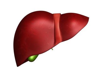 Image: Nonalcoholic steatohepatitis is a chronic form of liver disease. Photo: courtesy of dream designs / FreeDigitalPhotos.net.