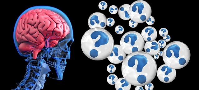 brain-2546101_640