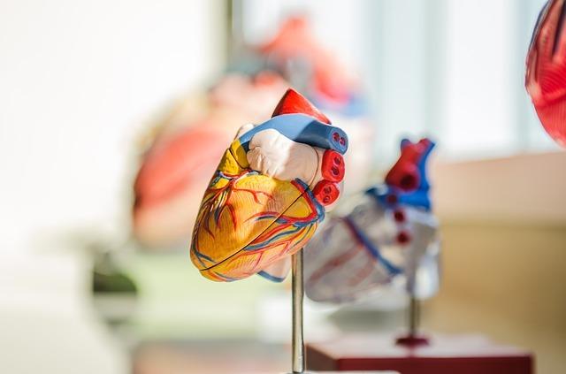 chronic heart