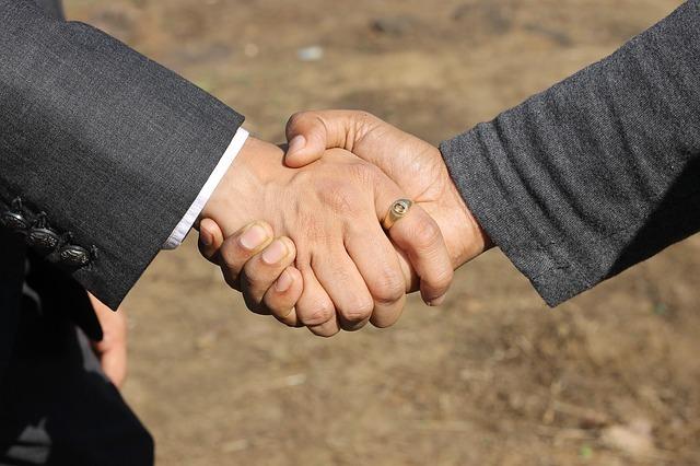 Mallinckrodt to divest BioVectra for £202m