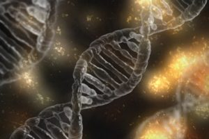 CRISPR, KSQ Therapeutics join forces to advance cell therapies in oncology