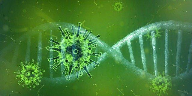 coronavirus-4833754_640 (2)