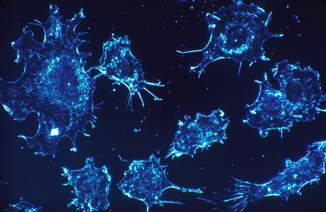 NeoImmuneTech gets IND clearance for NT-I7 trial in locally recurrent SCCHN